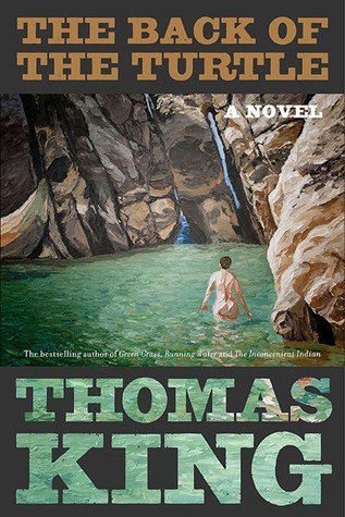 The cover of The Back of the Turtle shows a nude person facing away from the viewer. The person is wading in a pool of water surrounded by high natural stone.
