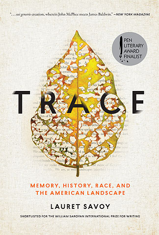 The cover of Trace shows a yellow leaf spotted with holes. Behind the leaf fain words can be read through the holes.